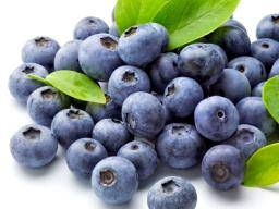 Everything you need to know about blueberries
