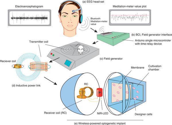 Illustration of device