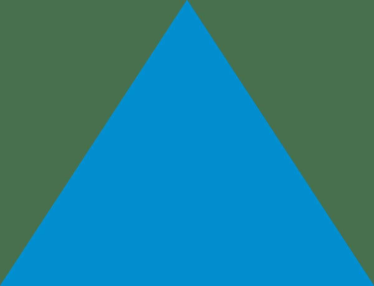 Blue Advantage Insurance