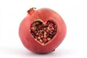 grenade-cardiovasculaire
