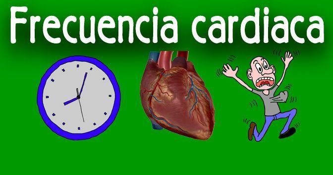 Frecuencia cardiaca - Todo lo que necesita saber