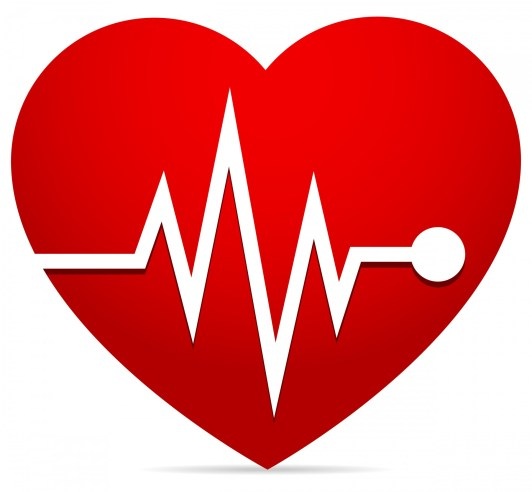 heart-rate-ekg-ecg-heart-beat