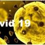 Who Names Coronavirus As Covid 19