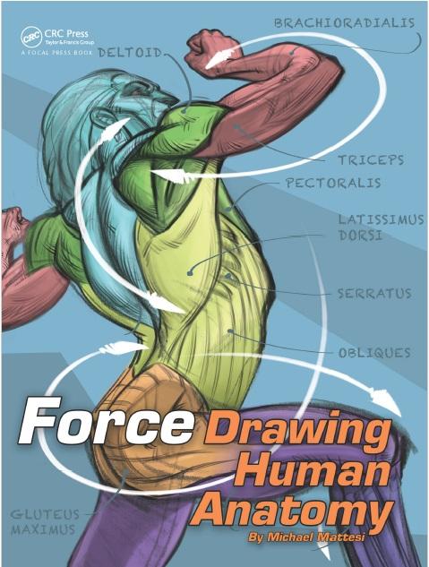 FORCE: Drawing Human Anatomy PDF Free Download Direct Link