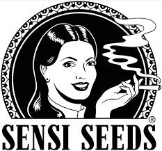 sensi-seeds-media-influencer