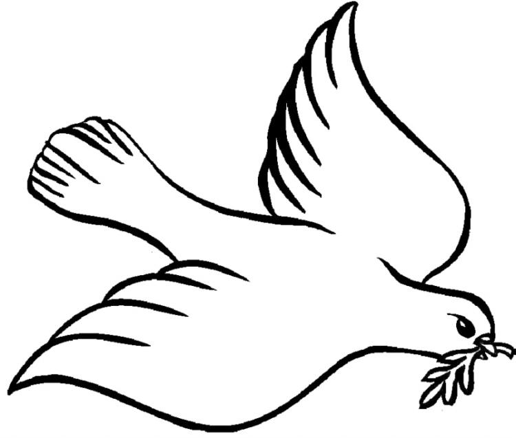 Heimat von Friedens Taube … nz