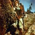 Shooting Arrows Through Myth and History: The Evolution of the Robin Hood Legend