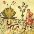 The Mandrake Plant and its Legend