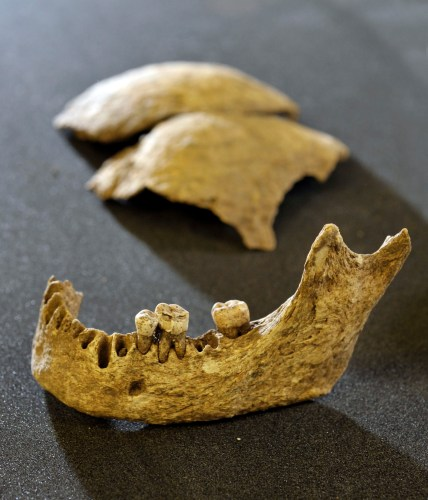 These may be the remains of King Olaf Guthfrithsson - photo from Historic Scotland