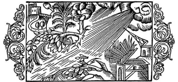medieval wind storm