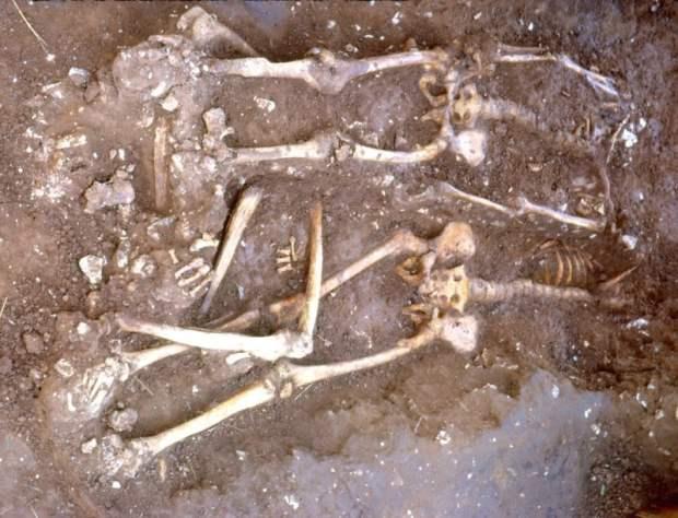 Skeletons under excavation at Walkington Wold - photo by Rod Mackey