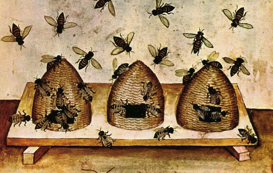 Resultado de imagen de beekeeping medieval