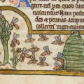 Beekeeping from Antiquity Through the Middle Ages