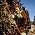 5 Fun Facts About Robin Hood