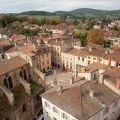 Small-town life in a late medieval Burgundy: the case of Cluny