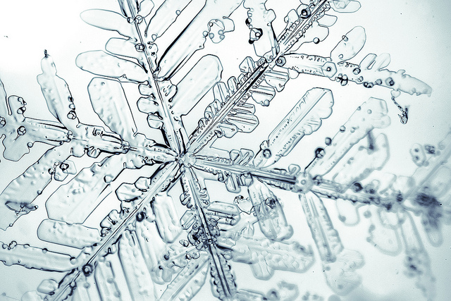 A snow flake under the microscope - image by ZEISS Microscopy / Flickr
