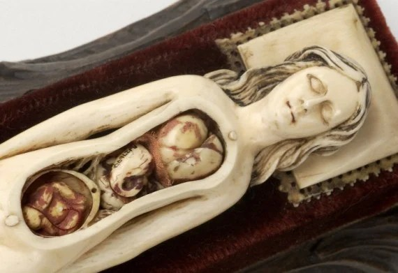 Ivory anatomical model of a pregnant female circa 17th century - Photo Credit : Wellcome Library