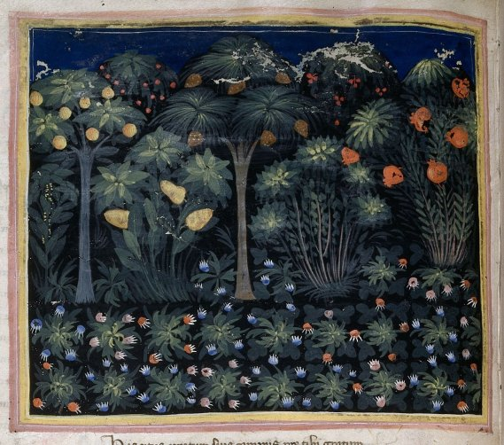 A medieval garden - from British Library MS Royal 6 E IX   f. 15v