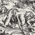 A Wolfish Reflection: A Literary Analysis of the Werewolf Story in 'The King's Mirror'