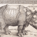 How the Pope's rhino drowned and was immortalised in art history