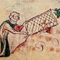 Were rabbits first domesticated in the Early Middle Ages?