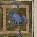 The Forgotten Beasts in Medieval Britain