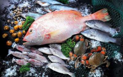 People Eating Mercury-Heavy Fish Are at Higher Risk of Developing ALS