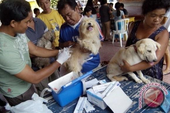 Virus Rabies Karena Gigitan Hewan