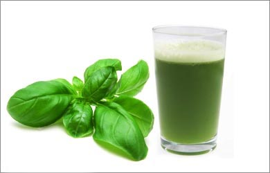 Treatment of Food Poisoning: Basil Leaves