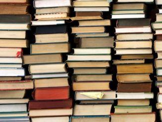 Todi, libri per bambini, Miccioni (Pd), i libri non sono pericolosi