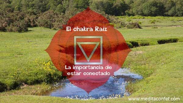 El Chakra Raíz te conecta con la Tierra.