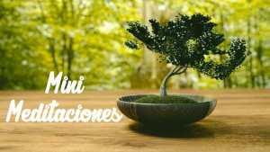 Meditación de cinco minutos: Consigue paz mental.