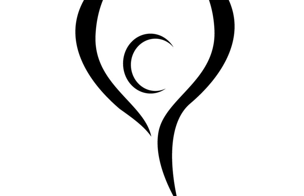 Apprendimento, polvere, presente, energia, zen (saggezza buddhista)
