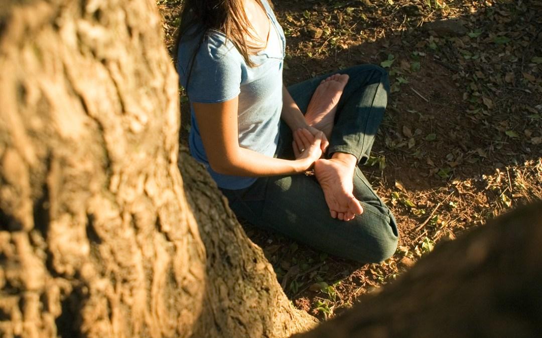 Felicità e sofferenza sono entrambe passeggere – Thich Nhat Hanh