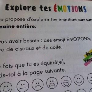 carnet-des-emotions