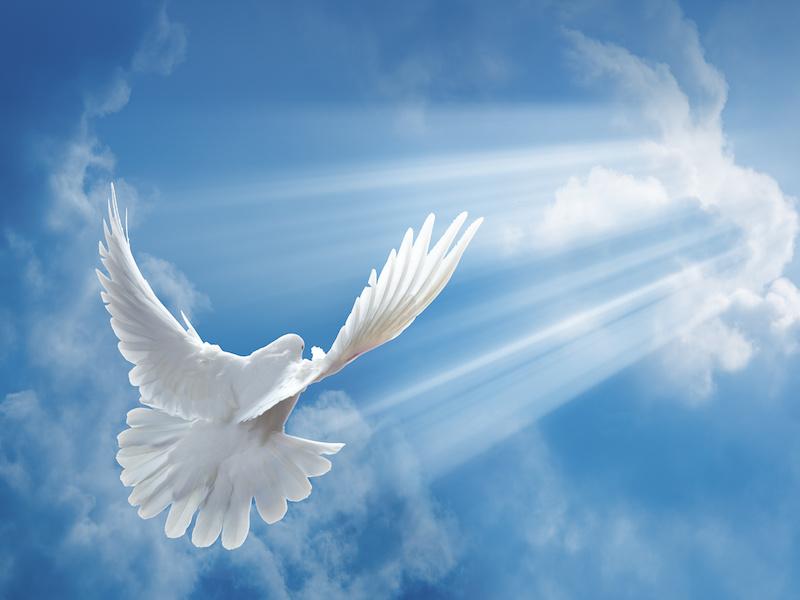 International Day of Peace – 21 September