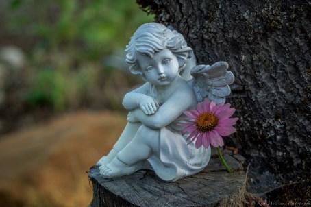 angel-statue