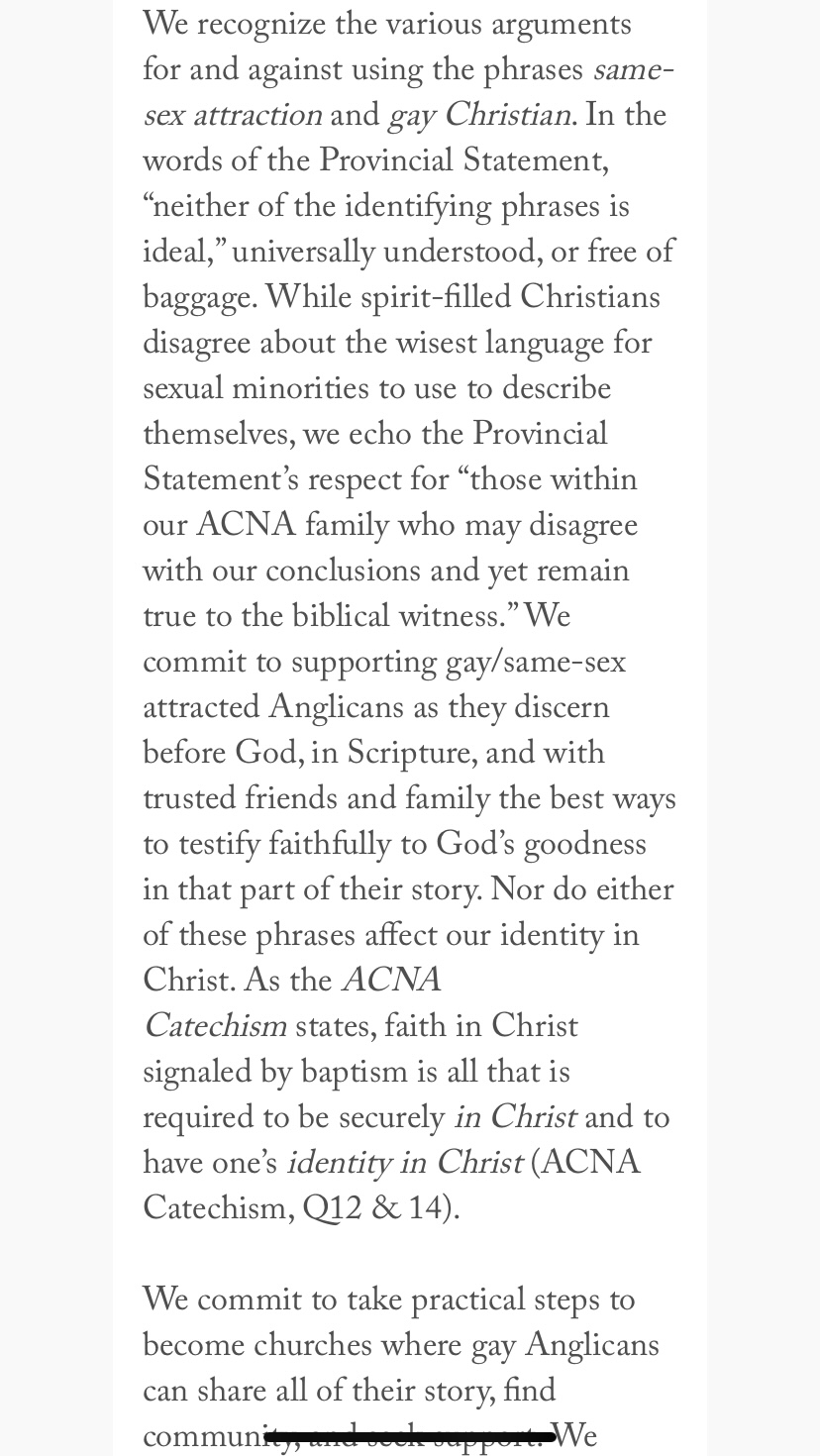 """""""Dear Gay Anglicans"""" page 5"""