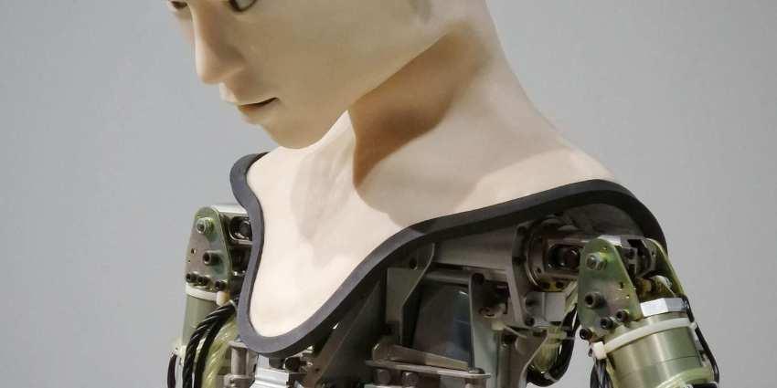 meccanicità  e invidualità nell'uomo