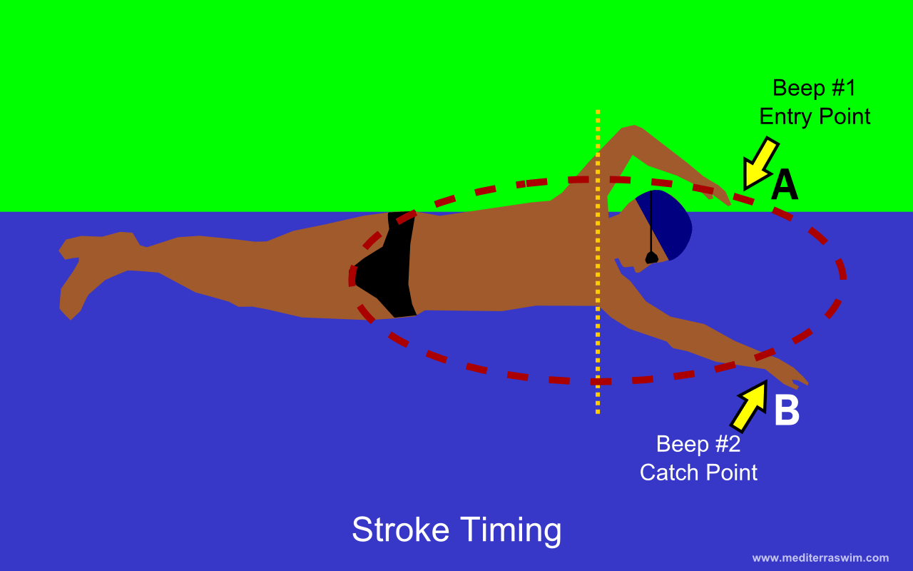 hight resolution of freestyle stroke diagram