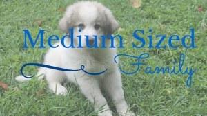 Medium Sized Family (1)