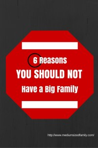 Reasons You Should Not Have a Big Family from Medium Sized Family http://wp.me/p6sbns-bX