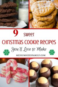 Looking for some Christmas cookie recipes to try this year? These delicious Christmas cookie ideas will put you right in the spirit of the season.