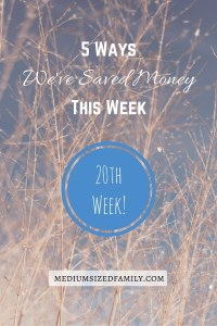 5 Ways We've Saved Money This Week 20: This is the 20th edition of the series which now has 100 different ways to save money.
