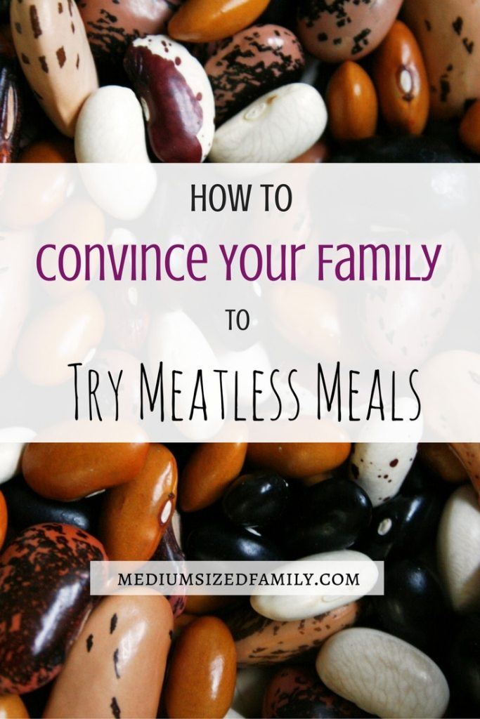 How to convince your family to try meatless meals.  Looking for easy meatless meal ideas?  Find tips for getting the family onboard, plus a list of delicious recipes even the kids will love!