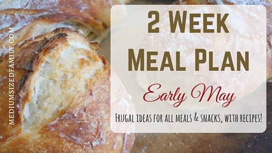 2 Week Meal Plan for Early May