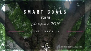 A check in on our SMART goals for June.