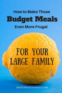 I have lots of budget meals for large families, but these tips are going to save me even more money!