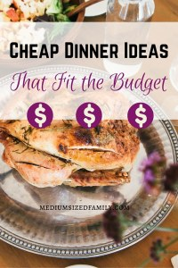 Cheap dinner ideas that fit the budget. Looking for great tasting cheap meals that help you keep your grocery budget low? Here's a list of ideas, plus ideas for making cheap meals even cheaper.