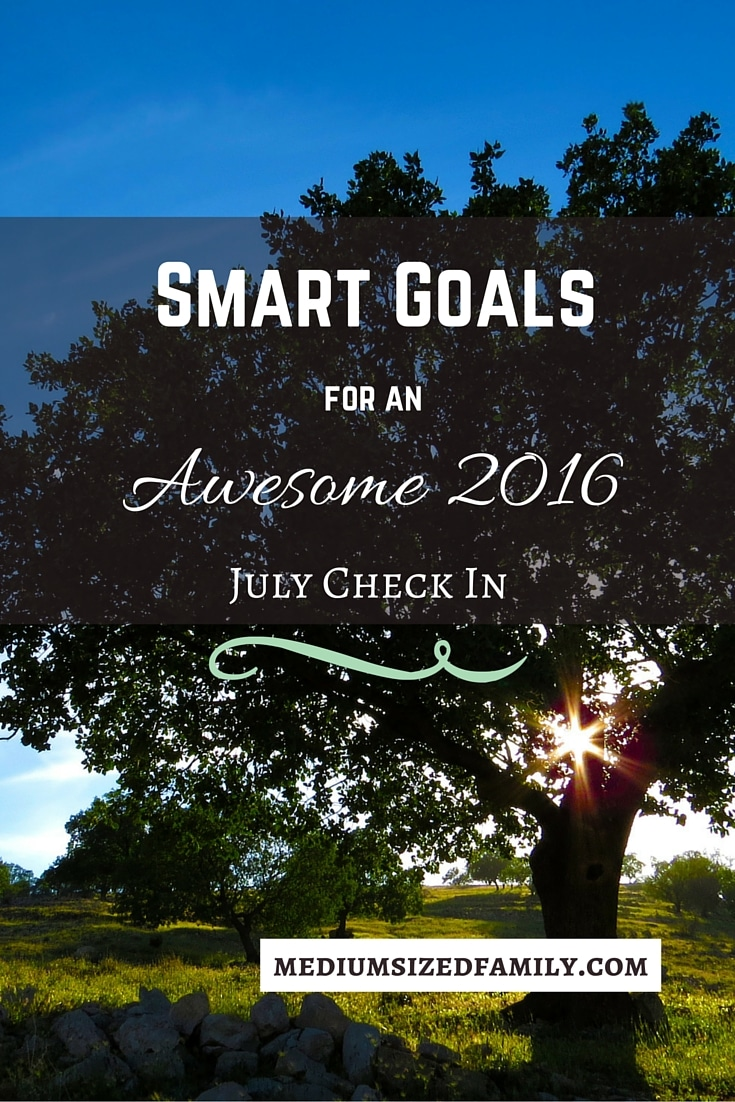 Smart Goals July Check In Pin